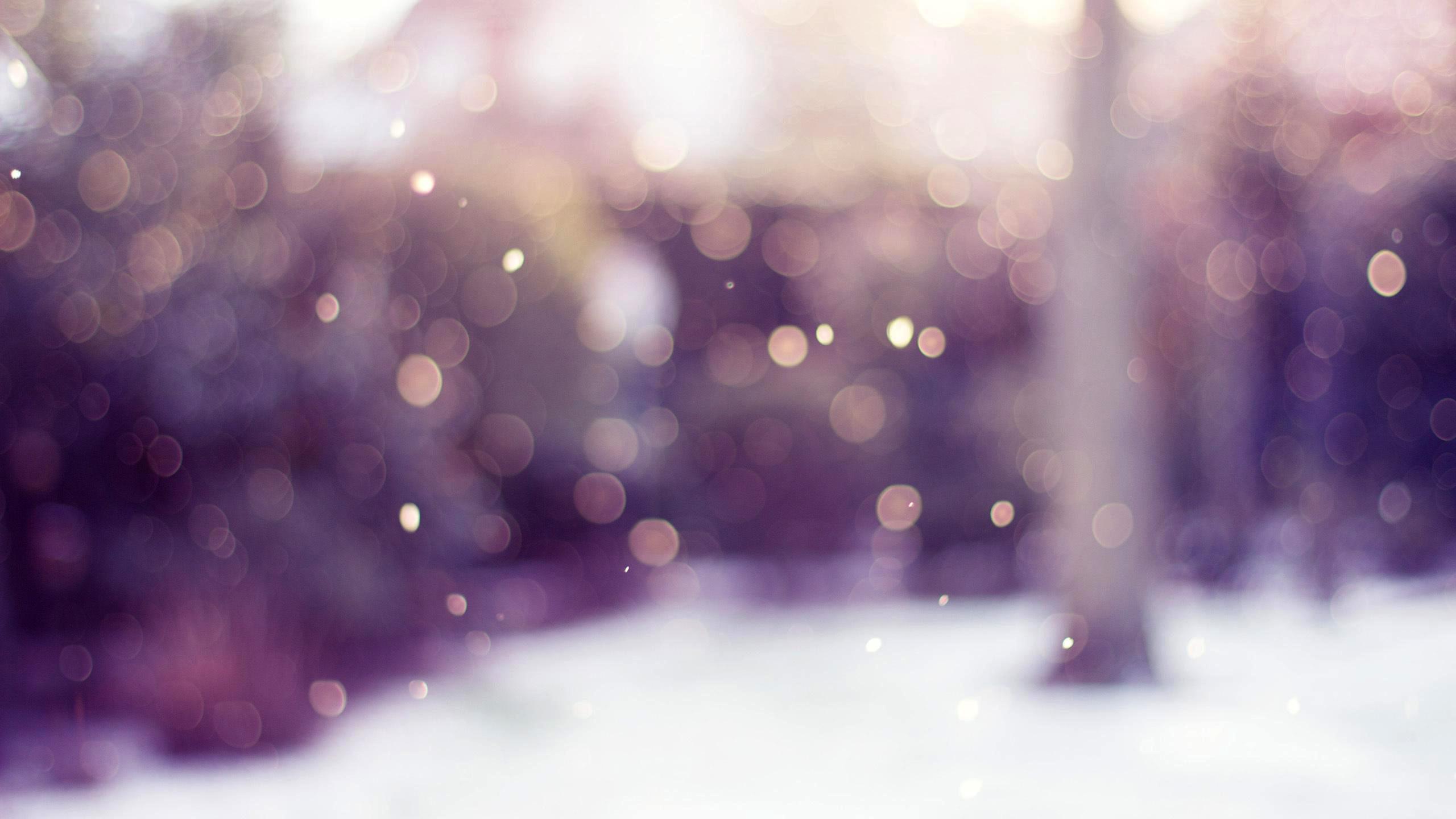 snowy-bokeh2016-1